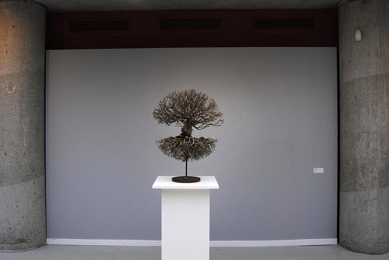 """""""Por las ramas"""", la nueva exposición de profesores de Bellas Artes en el Real Jardín Botánico"""