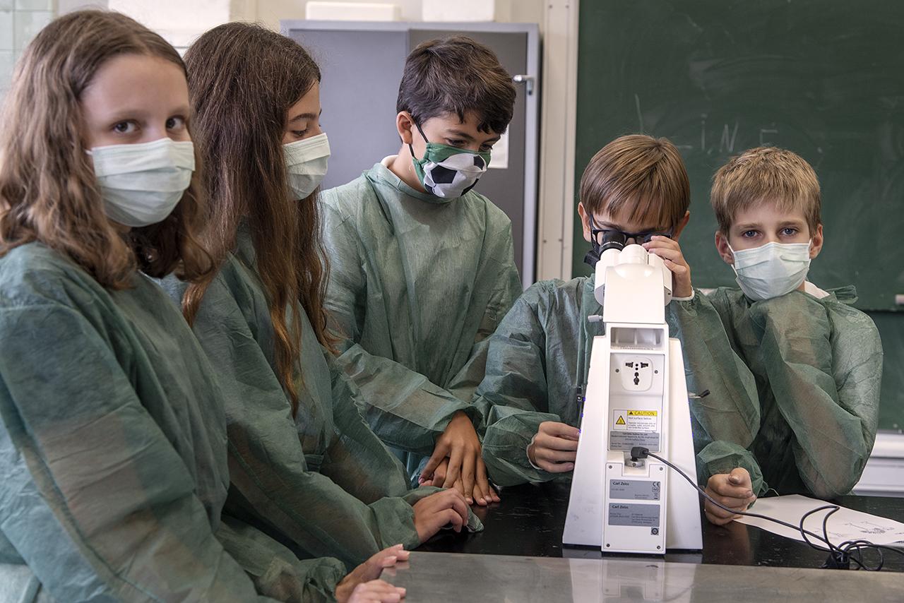 Taller sobre hongos en la Facultad de Biológicas /Fotografía: J. de Miguel