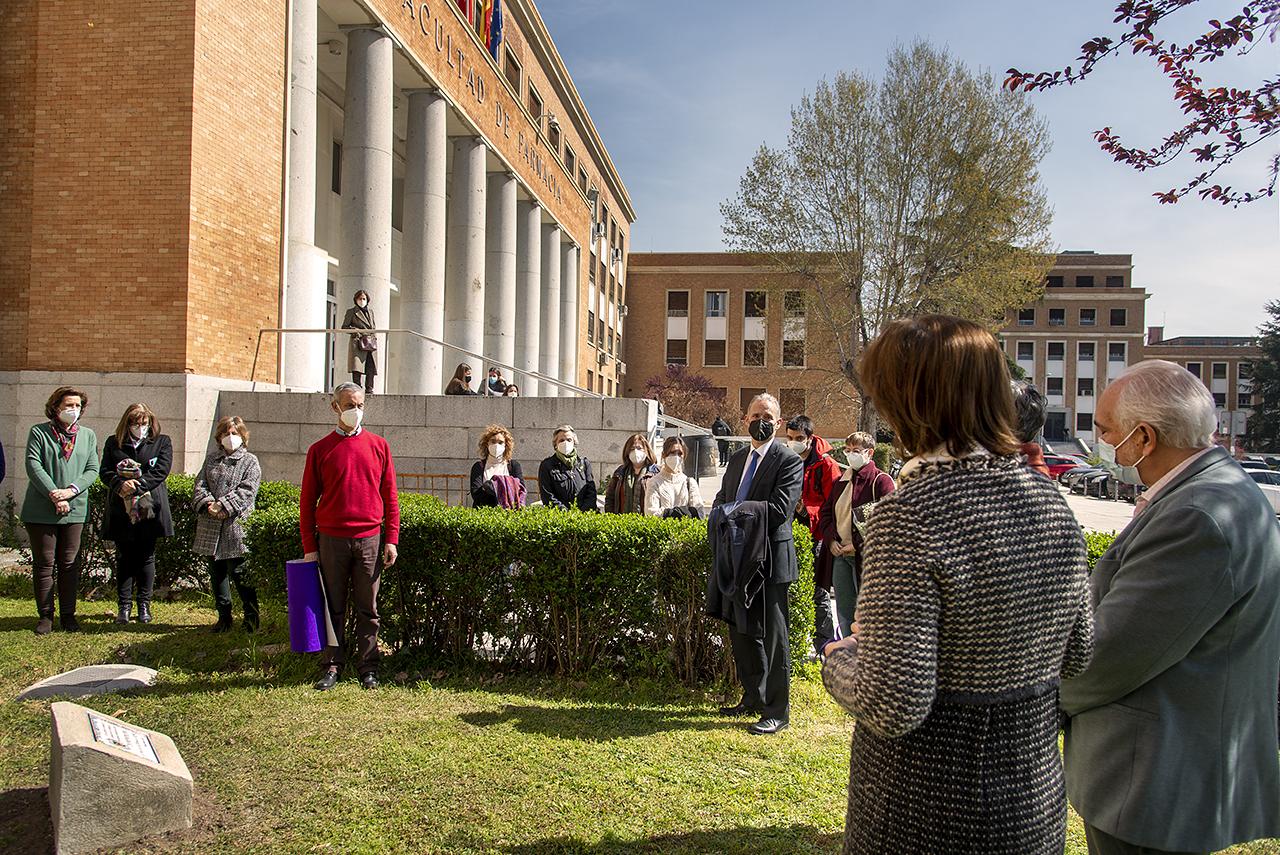 La placa y los madroños ya se pueden ver en el jardín junto a la puerta principal de la Facultad
