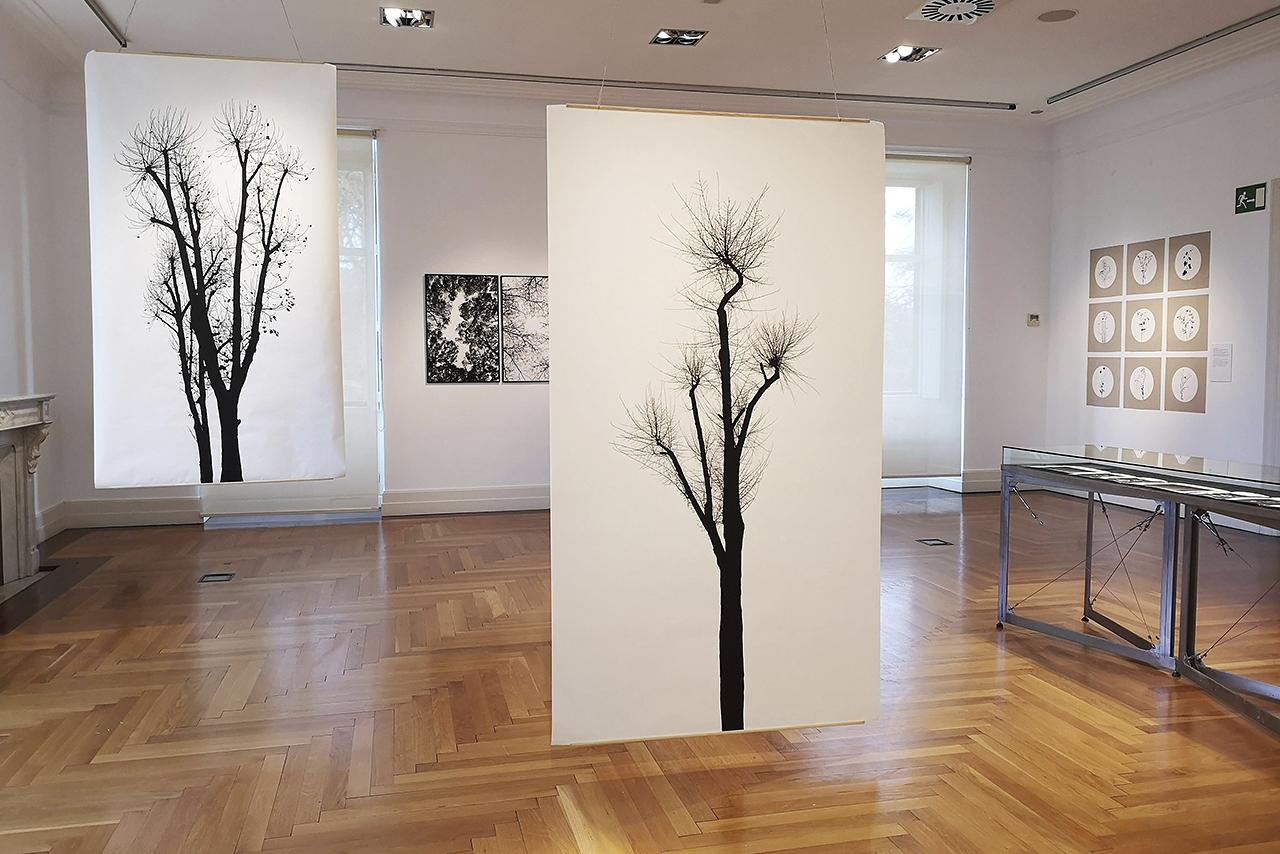 La profesora Toya Legido expone su obra en San Sebastián