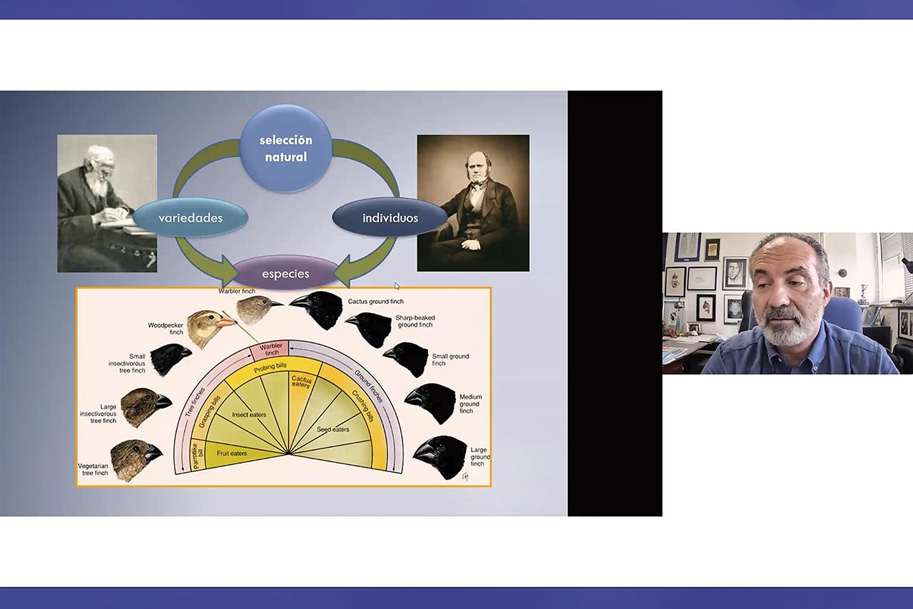 Fernando Pardos ha comparado las trayectorias de Charles Darwin y Alfred Russell Wallace